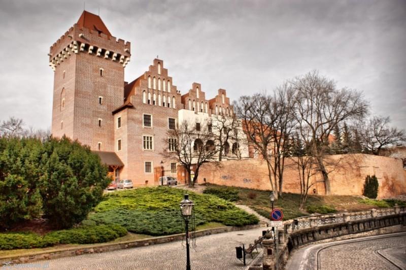 the Royal Castle on the Przemysł Hill